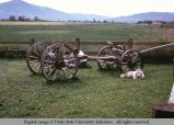 Antique wagon frame as lawn decoration