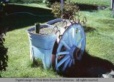 Wagon wheel as flower planter decoration