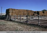 Modern pole fence and baled hay, Ammon, Idaho, 1973