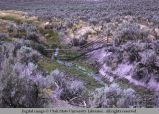 Pole fence crossing gully, northwest of Holbrook, Idaho, 1970