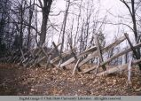 Ripgut fence, Midwest, 1959
