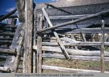 Jack fence, with gate and lock, Horse Prairie, Montana, 1947
