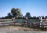Jack fence, north of Idaho Falls, Idaho, 1979