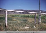 Pole and net wire fence, Idaho, 1963