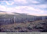Picket fence, Wyoming, 1963