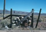 Barbed wire and wood pole gate, Oregon, just north of McDermitt, Nevada, 1977