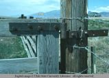 Gate hinge, Willard, Utah, 1977
