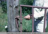 Gate latch, Eatonville, Washington, 1964