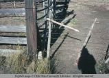 Gate latch, south of John Day, Oregon, 1977