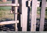 Gate latch, 1964
