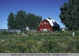 Barn, near Blackfoot, Idaho, 1973