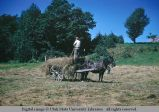Hay cart, Ile d'Orleans (Island of Orleans), Quebec, Canada, 1958