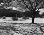 Snow sculptures on the Quad, circa 1957