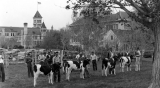 Dairy judging contest on the Judging Paddock on the north side of campus, 1940s