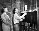 Ringing the chimes in Old Main Tower, early 1950s