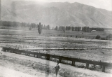 Controlled application of irrigation water, circa 1908