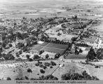 Aerial view of campus, 1952