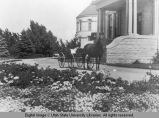 View of a horse and buggy outside Old Main looking north, circa 1910