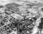Aerial photo of campus, 1958