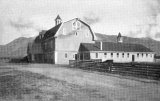 Barns for cattle and sheep on campus of Agricultural College of Utah, 1920s