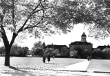 Campus view across the Quad, 1964