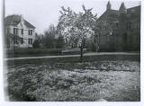 View of Old Main & Experiment Station buildings, circa 1907 showing ornamental plantings.