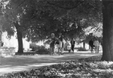 Students walking along the Quad, 1966