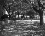 Autumn view of sidewalk in front of Animal Science building, 1960s
