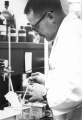 Man working in laboratory, 1960s
