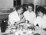 Three women working on an experiment, 1960s