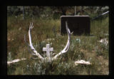 Grave marker near the South Fork of the Shoshone River close to Cody, Wyoming, 1997 (1 of 16)