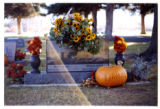 Ronald and Patty Marie Speth headstone, decorated for fall, Logan, Utah, 1999 (2 of 2)