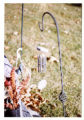 Dustin Michael Daniels gravemarker and fall decorations, hanging chimes, Logan, Utah, 1999 (1 of 2)