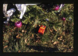 Christmas tree grave decoration and grave marker, Salt Lake City, Utah, 2000 (2 of 2)