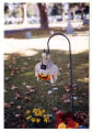 Halloween pumpkin decoration in a cemetery, Logan, Utah, 1999 (99 of 198)