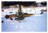 Decorated Christmas tree and paper sacks in cemetery, Logan, Utah, 1999