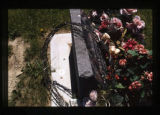 Mother Antonette headstone, side view of roses, Cody, Wyoming, 1997