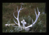 Gravemarker near the South Fork of the Shoshone River close to Cody, Wyoming, 1997 (3 of 16)