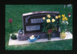 Gilbert M. Anderson and Josephine R. headstone with Easter decorations, Logan, Utah, 2001
