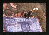Hipwell grave marker decorated with a small Christmas tree and a bumble bee in Ogden, Utah, 2000