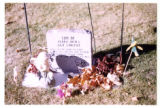 Samuel Robinson heastone and grave decorations, backside wide-angle view, overexposed, Logan,...