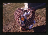 Heart basket with flowers and photograph in the Salt Lake City Cemetery, Utah, 2000