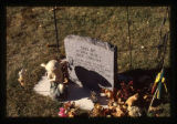 Samuel Robinson heastone and grave decorations, backside wide-angle view, shadowed, Logan, Utah,...