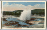 Jewel Geyser postcard, Yellowstone National Park, ca. 1912