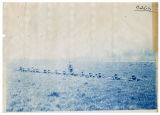 1905Cadets practicing skirmish fire on field, north of orchards, 1 of 3, ACU, 1905