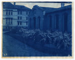 Foliage in front of Old Main and Mechanic Arts Building, ACU, 1896-1916