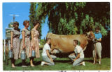 Buttercup Dairy promotional postcard