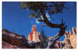 Postcard of Queen's Garden, Bryce National Park