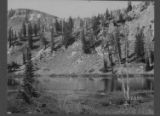 Lake Gog, showing Alpine Fir, July 9, 1902